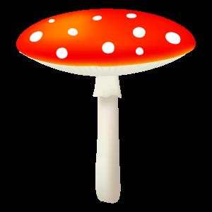 m_f_mushroom60.png